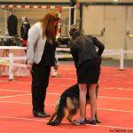 Maëlle participe au concours Junior handling avec Lovana