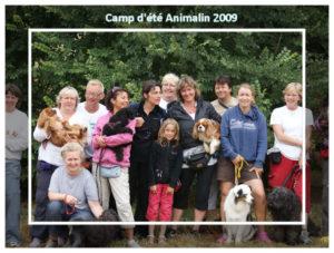 animalin_2009