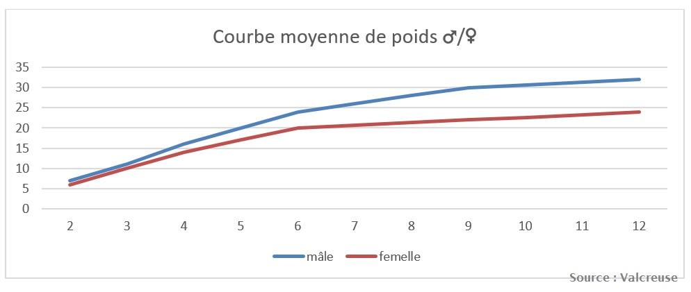 courbe-poids-croissance