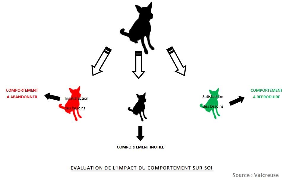 evaluation-impact-comportement1