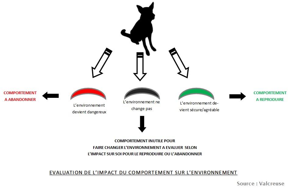 evaluation-impact-comportement2