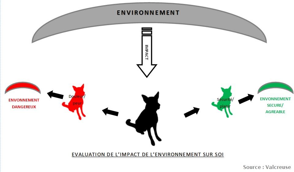 evaluation-impact-environnement