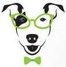 chien-a-lunettes