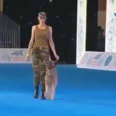Bienveillance et bien traitance en matière d'éducation canine