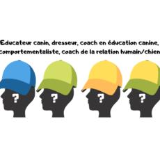 Educateur canin, dresseur, coach en éducation canine, coach de la relation humain/chien, comportementaliste, à qui s'adresser ?
